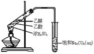 实验室用如图所示的装置制取乙酸乙酯.图片