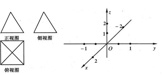 (Ⅰ)在给定的空间直角坐标系中作出这个几何体的直观图(不用写作